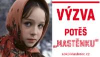 potes_nastenku_2